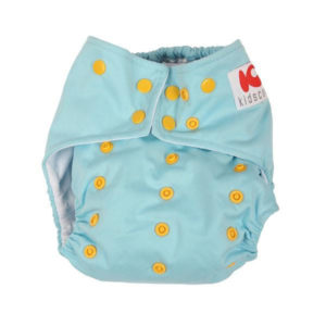 Cloth Diaper With Insert1