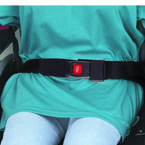 Wheelchair Safety Strap Seat Belt