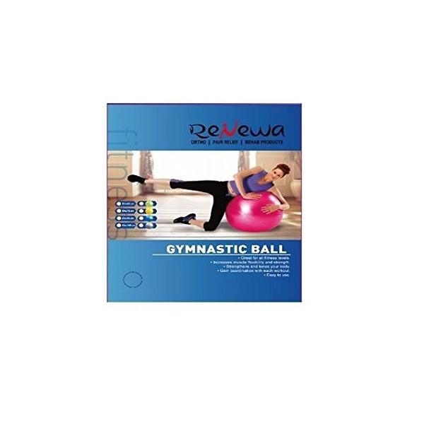 Renewa Anti Burst Gym Ball with Pump GCo 65CM GCo for Total Body Fitness and Abdominal Toner Exercise Workout Yoga Ball
