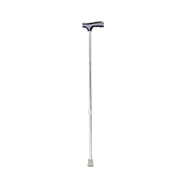 Renewa Walking Stick Fs 930L
