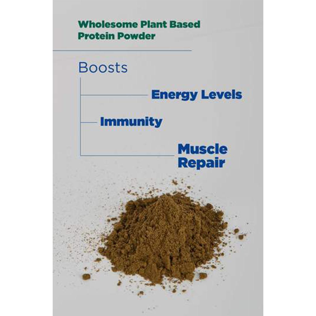 Hemp Seed Powder GCo 100g 2
