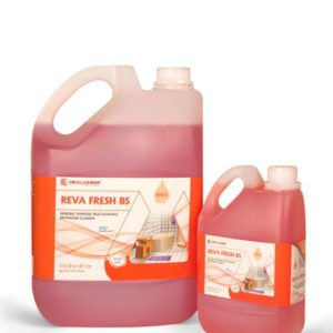 reva fresh bs bathroom cleaner 500x500 1