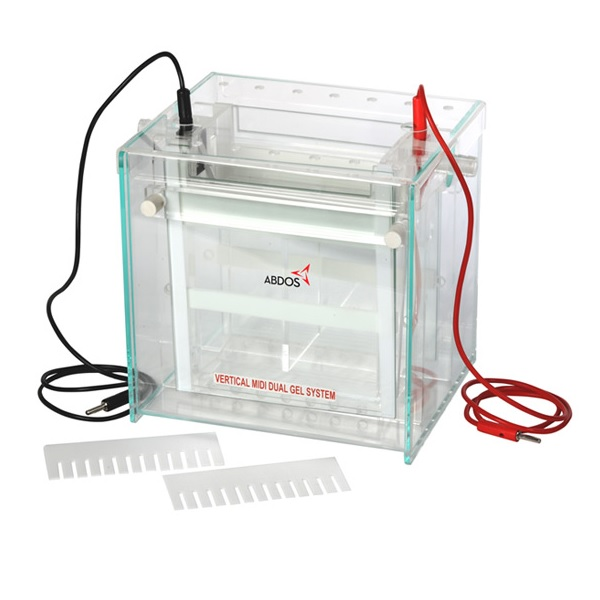 ABDOS Vertical Dual Midi Gel System is available for best price at Medpick